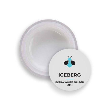 bfg-iceberg50